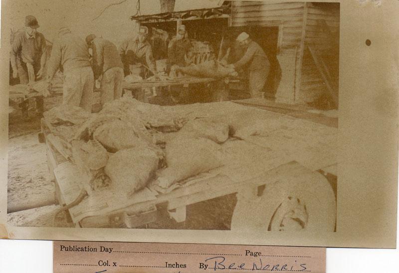 hog-killing-norris-farm-img191