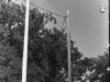 cvfd-dedication-of-flag-pole-in-memory-of-floyd-buck-harrellimg579