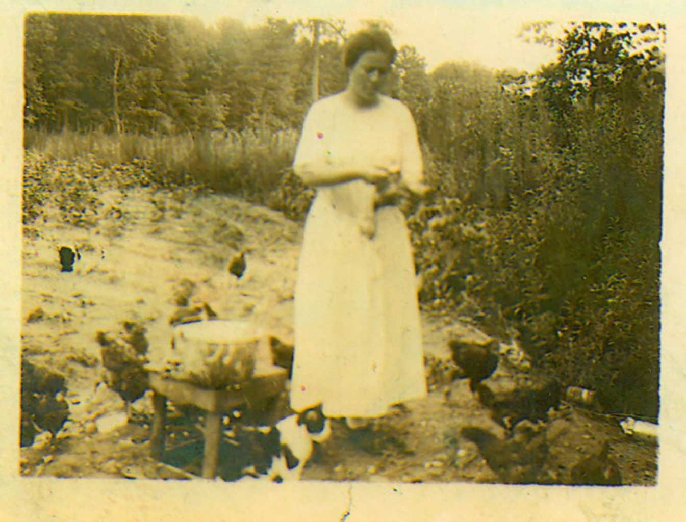 lady-with-chickens-and-one-cat-img024