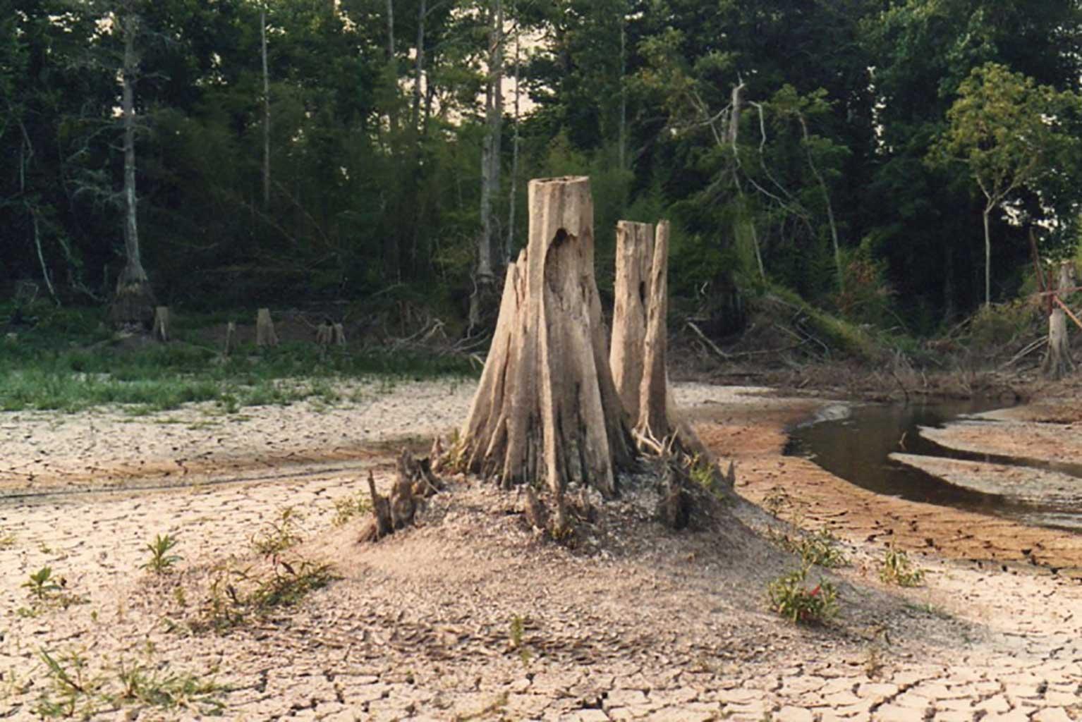 mill-pond-after-dam-broke-img420