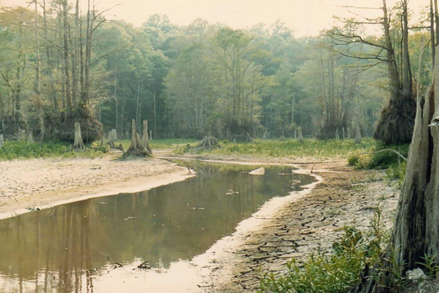 mill-pond-after-dam-broke-mg421