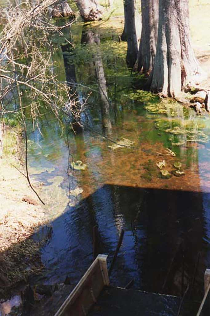area-below-water-wheel-leading-to-creek-img291