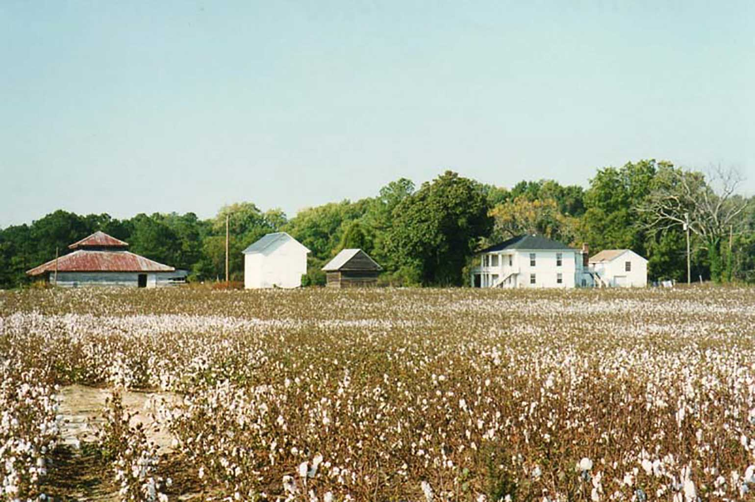 cotton-field-kirk-apartments-out-building-1995-img300