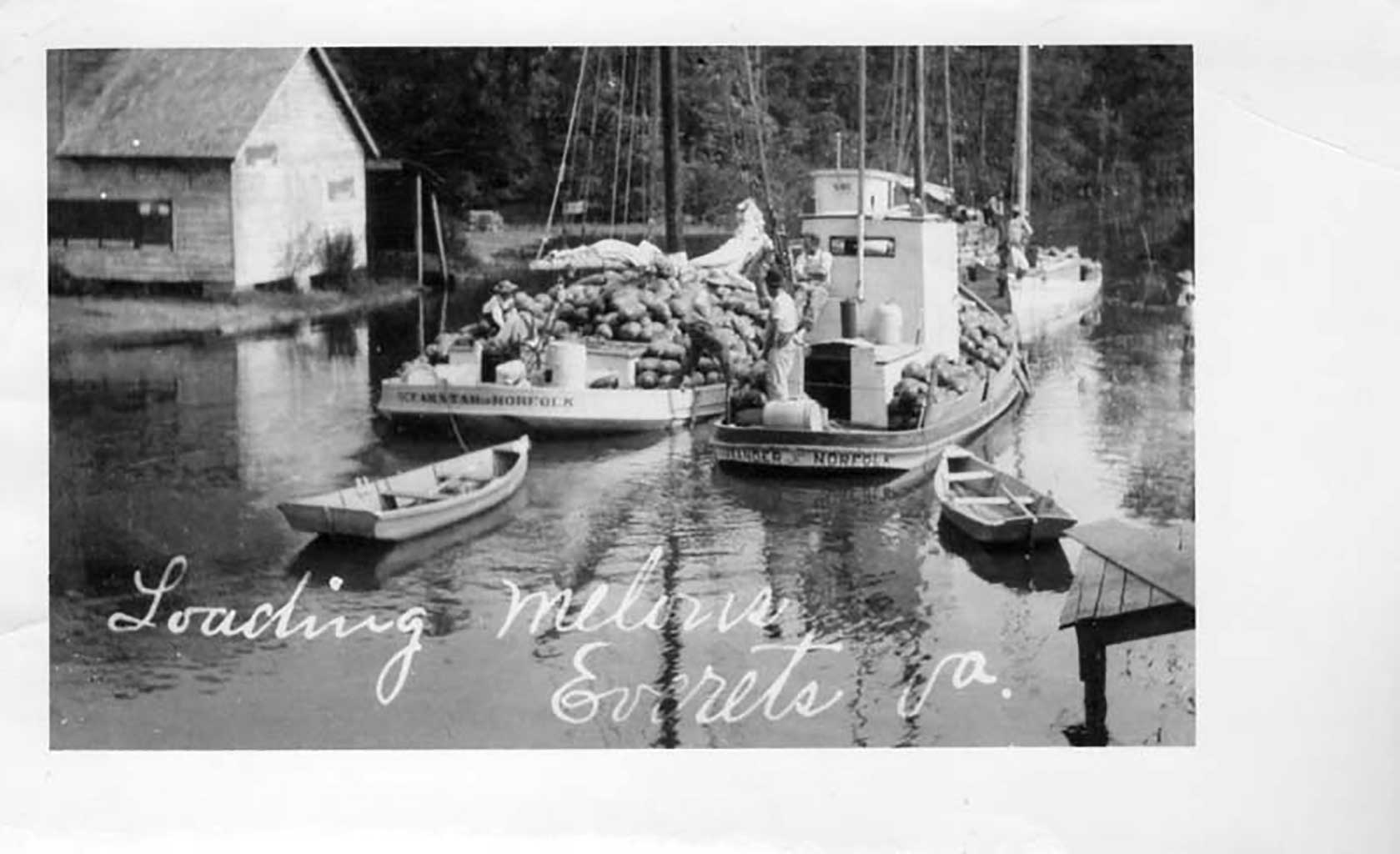 loading-melons-at-everet-1914-img204