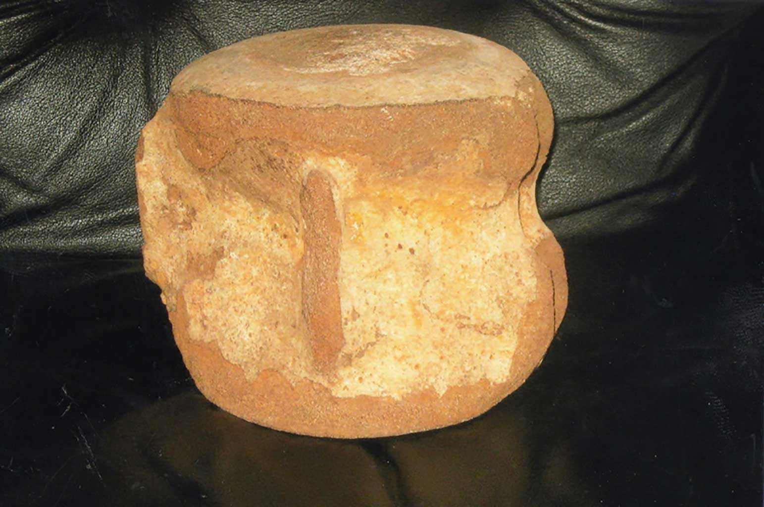 15-million-year-old-whale-bone-found-in-marl-pit-in-chuckatuck-img388