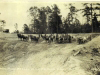 horse-teams-at-lake-prince-img183