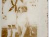 thomas-jefferson-saunders-iii-img898